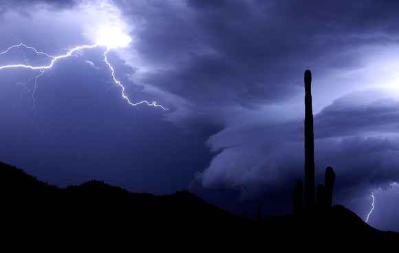 Arcus Clouds over Saguaro